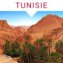 Kit Novembre : TUNISIE